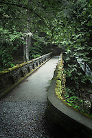 Stone bridge over Whatcom Creek and Falls, Whatcom Falls Park, Bellingham Washington