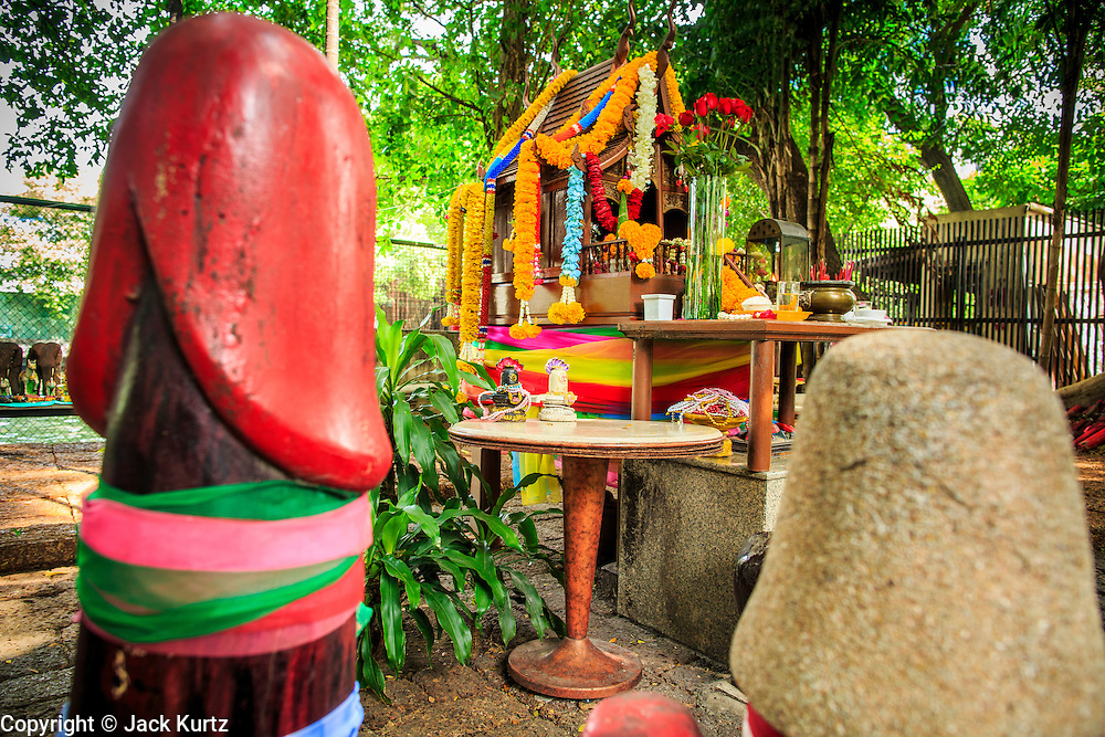 04 JANUARY 2012 - BANGKOK, THAILAND:  The spirit house at the Lingam Shrine in Bangkok. The Lingam Shrine is a phallus garden behind the Swissotel Nai Lert Park Hotel, an exclusive 5 star hotel in Bangkok. Clusters of carved stone and wooden shafts surround a spirit house and shrine built by a Bangkok millionaire to honour Jao Mae Thap Thim, a female deity thought to reside in a banyan tree on the site. According to Bangkok legend, a woman who made an offering at the shrine had a baby after praying at the shrine, and it has received a steady stream of worshippers ever since.   PHOTO BY JACK KURTZ