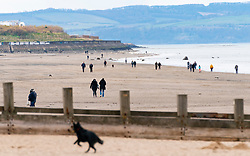 Edinburgh, Scotland, UK. 31 March, 2020. Despite Coronavirus lockdown members of the public are outside exercising and relaxing on Portobello promenade and beach in Edinburgh. Iain Masterton/Alamy Live News