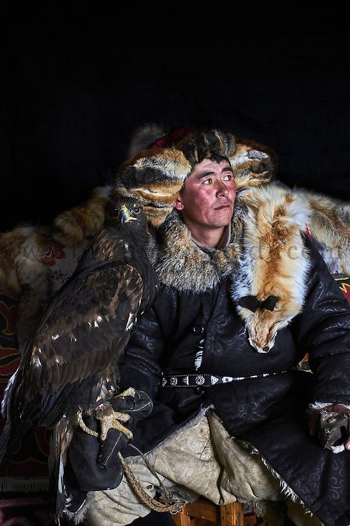Mongolie, province de Bayan-Olgii, Burkit, chasseur à l'aigle Kazakh avec son aigle royal // Mongolia, Bayan-Olgii province, Burkit, Kazakh eagle hunter with his Golden Eagle