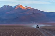 South America, Andes,Altiplano, Bolivia,