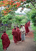 Buddhist monks collecting alms from a villager in Nyaungshwe, near lake Inle, Burma (Myanmar), 2003.