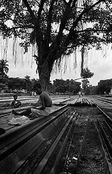 BANGLADESH DINAJPUR OCT94 - Landless and homeless people rest in the shade of a tree by the rail tracks at Dinajpur station, northern Bangladesh...jre/Photo by Jiri Rezac..© Jiri Rezac 1994