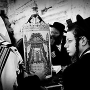 A group of hasidim touched with the traditional phylactery (box on the forehead) containing extracts of the Pentateuch, reads the scrolls of the Torah. Wailing Wall. Jerusalem.