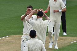 March 23, 2018 - Auckland, Auckland, New Zealand - England celebrates wicket  of Kane Williamson of Blackcaps is during Day Two of the First Test match between New Zealand and England at Eden Park in Auckland on Mar 23, 2018. (Credit Image: © Shirley/Pacific Press via ZUMA Wire)
