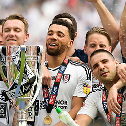 Fulham celebrating winning the Play-off Final