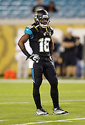 Jacksonville Jaguars wide receiver Ace Sanders (18) looks on during pregame warmups before the NFL week 14 football game against the Houston Texans on Thursday, Dec. 5, 2013 in Jacksonville, Fla. The Jaguars won the game 27-20. ©Paul Anthony Spinelli