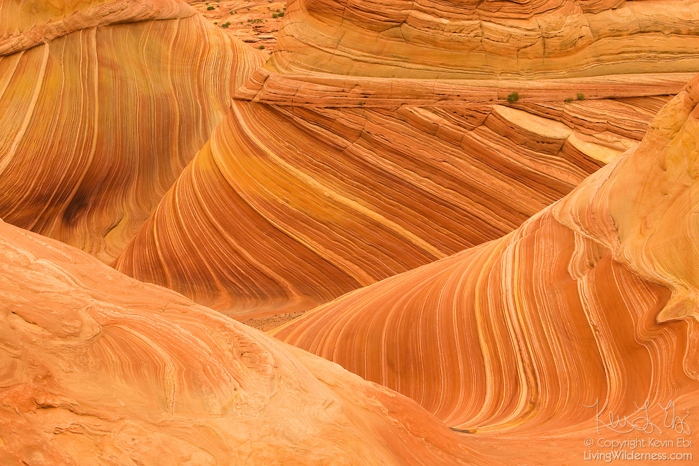 "Centuries of wind and rain have eroded a petrified sand dune, known as ""The Wave,"" located in the Coyote Buttes Wilderness on the Arizona-Utah border."