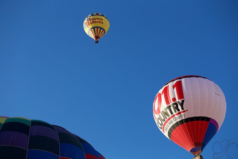 The sky quickly fills with Balloons at the fiesta - you are always looking up no matter how many times you visit!
