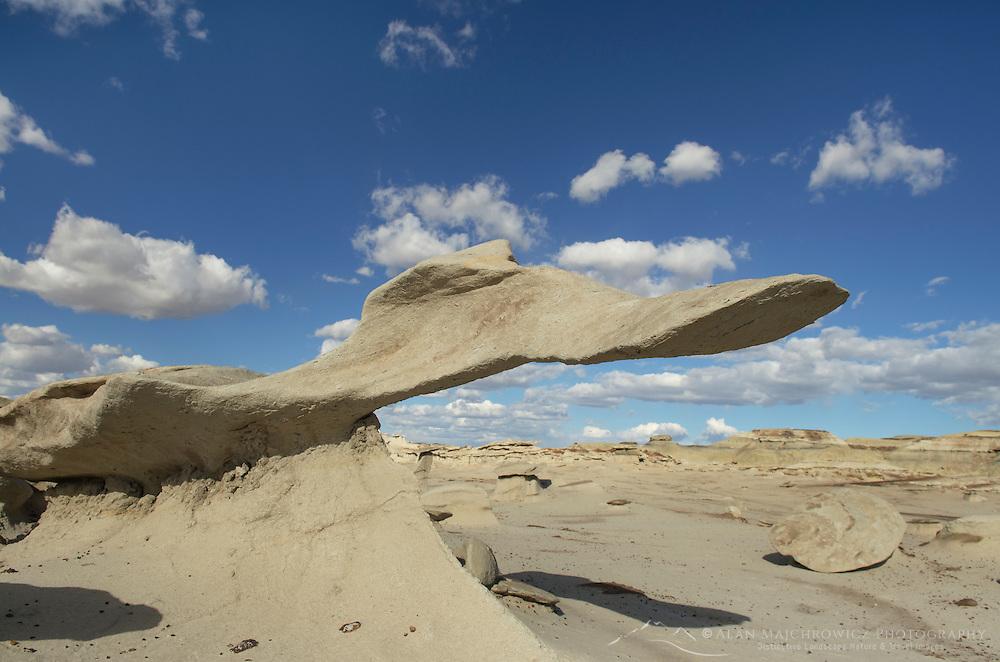 Wing sandstone formation at Bisti Badlands, Bisti/De-Na-Zin Wilderness, New Mexico