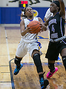 Pflugerville's Andrea Funderburke drives down the lane guarded by Cedar Ridge's Monae Smith.  The Panthers were defeated by a score of 64-39 at Panther Gym Friday.  (LOURDES M SHOAF for Round Rock Leader.)