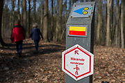 Walkers in woods that form part of the Foret de Soignes, on 25th March, in Everberg, Belgium. Forêt de Soignes or Sonian Wood is a 4,421-hectare (10,920-acre) forest that lies at the south-eastern edge of Brussels, Belgium. The forest lies in the Flemish municipalities of Sint-Genesius-Rode, Hoeilaart, Overijse, and Tervuren, in the Brussels-Capital Region municipalities of Uccle, Watermael-Boitsfort, Auderghem, and Woluwe-Saint-Pierre, and in the Walloon towns of La Hulpe and Waterloo. Thus, it stretches out over the three Belgian Regions.