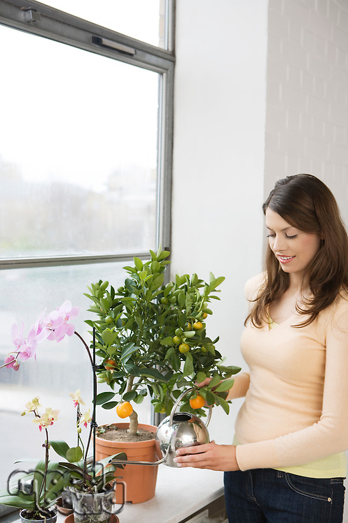 Woman tending plants on window sill
