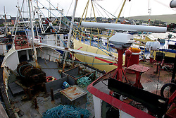 IRELAND KERRY DINGLE 6NOV05 - Fishing boat harbour in Dingle Town on the same named Peninsula, Irelands most westerly county...jre/Photo by Jiri Rezac..© Jiri Rezac 2005..Contact: +44 (0) 7050 110 417.Mobile: +44 (0) 7801 337 683.Office: +44 (0) 20 8968 9635..Email: jiri@jirirezac.com.Web: www.jirirezac.com..© All images Jiri Rezac 2005 - All rights reserved.