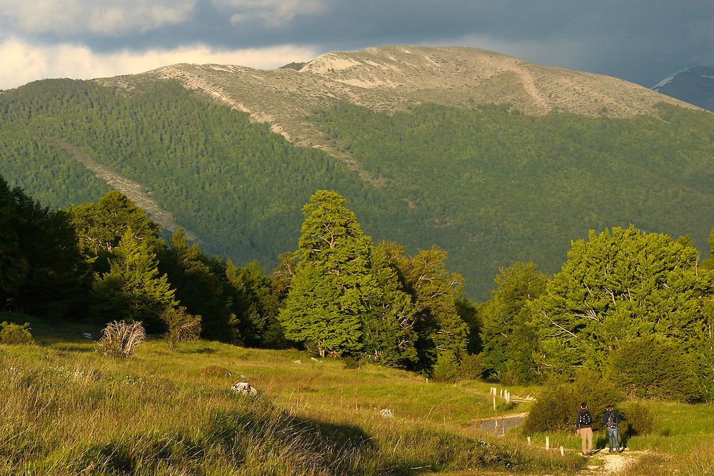 The Central Apennines rewilding area, Italy, in and around the Abruzzo, Lazio e Molise National Park.