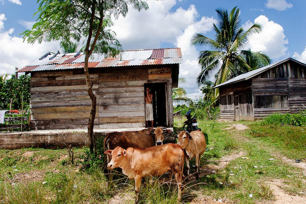 Village life in Desa Sungai. Aceh, Sumatra