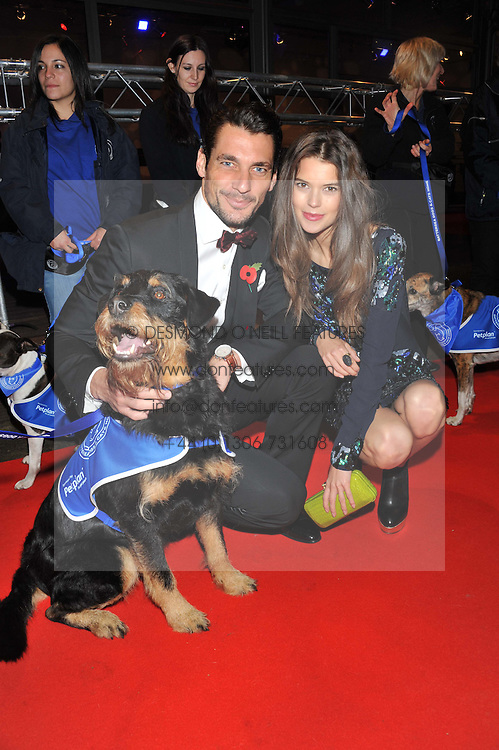 DAVID GANDY and SARAH ANN MACKLIN with Shaggy the dog at the Battersea Dogs & Cats Home Collars & Coats Gala Ball held at Battersea Evolution, Battersea Park, London SW8 on 8th November 2012.