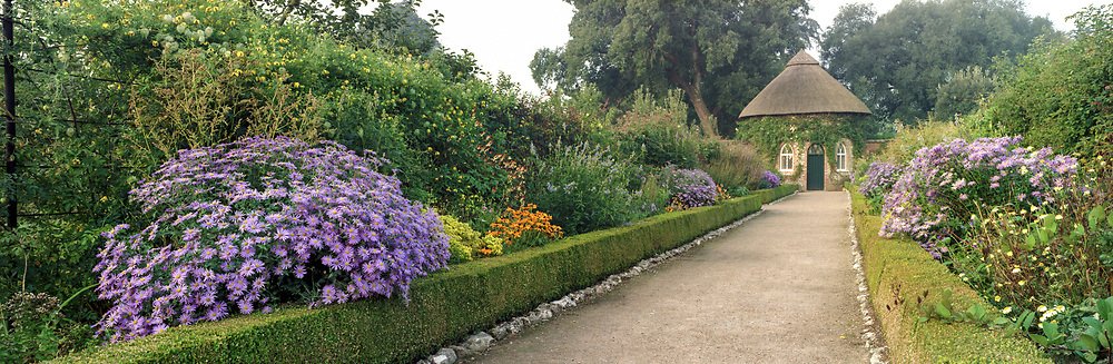 Path with long double borders including asters leading to the apple store in the Fruit Garden, West Dean Gardens, West Sussex, England