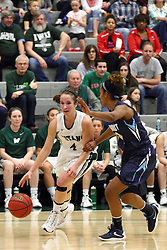 20 February 2016:  Rebekah Ehresman during an NCAA women's basketball game between the Elmhurst Bluejays and the Illinois Wesleyan Titans in Shirk Center, Bloomington IL
