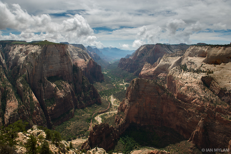 View from Observation Point - Zion National Park, Utah, U.S.A.