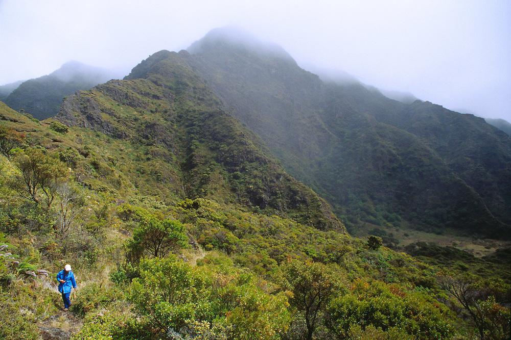350803-1015 ~ Copyright: George H. H. Huey ~ Hiking the Kaupo Trail, deep in the Haleakala Wilderness Area.  Haleakala National Park, Maui, Hawaii