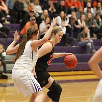 Women's Basketball: University of St. Thomas (Minnesota) Tommies vs. Wartburg College Knights