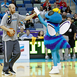 December 17, 2011; New Orleans, LA, USA; New Orleans Hornets center Chris Kaman introduced to fans at a scrimmage at the New Orleans Arena.   Mandatory Credit: Derick E. Hingle-US PRESSWIRE