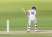 Scott Borthwick (Durham County Cricket Club) in action during the LV County Championship Div 1 match between Durham County Cricket Club and Hampshire County Cricket Club at the Emirates Durham ICG Ground, Chester-le-Street, United Kingdom on 1 September 2015. Photo by George Ledger.