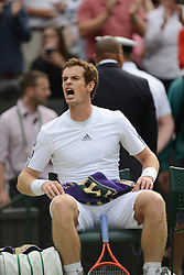© London News Pictures.. 03/07/2013. Andrew Murray defeats Fernando Verdasco, Spain in the men's quarter finals at the 2013 Wimbledon Lawn Tennis Championships . Andy Murray went on to win in the final becoming the first British male to win the tournament in 77 years. Photo credit: Mike King/LNP