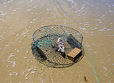 Northland-Crab fishing at Uretiti Beach