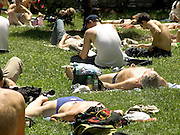 People laying in a park on the grass New York City