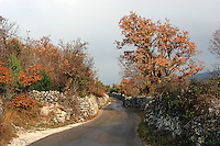 smale veier, narrow roads, høstfarger, automn colors