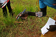 A member of a Community Liaison team from the British NGO Mines Advisory Group (MAG) discovers an unexploded ordinance in a village in Central Equatoria Province..Arapi, South Sudan. 30/06/2011..Photo © J.B. Russell