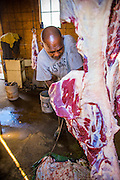 16 JUNE 2012 - GILA RIVER INDIAN COMMUNITY, PHOENIX, AZ: Ibrahim Swara-Dahab quarters and butchers a freshly slaughtered sheep in the killing room on his goat farm. Swara-Dahab, 57, left Somalia in 1993. He lived in a refugee camp in Kenya for five years before coming to the United States and in 2006 settled in the Phoenix. He got a $10,000 loan from the micro-enterprise development program for refugees. The money allowed him to buy dozens of goats and sheep, each worth $130 to $200, turning his one-sheep operation into a money-making, time-consuming herd. He now operates a full time goat ranch and slaughter house. He slaughters his goats and sheep in the Muslim halal tradition. Most of his customers are fellow refugees and Muslims who prize goat meat or eat only meat slaughtered according to halal traditions. His butchering operation is on the Gila River Indian Community, near Laveen, AZ, just southwest of Phoenix.   PHOTO BY JACK KURTZ