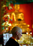 Rinchen Khandro, a Buddhist nun from the Samye Ling community in southern Scotland, pictured inside the temple performing her daily rituals on her final day before travelling to Holy Island off the west coast where the former model, songwriter and fashion designer will spend the next three years in retreat.