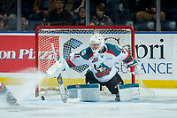 KELOWNA, CANADA - JANUARY 30: Brodan Salmond #31 of the Kelowna Rockets makes a save against the Medicine Hat Tigers on January 30, 2017 at Prospera Place in Kelowna, British Columbia, Canada.  (Photo by Marissa Baecker/Shoot the Breeze)  *** Local Caption ***