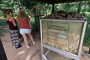 Phnom Penh, Cambodia. Choeung Ek Killing Fields memorial site, a reminder of the genocide committed by the Khmer Rouge. Tourists listening to the audio tour.at a display of remaining bones.