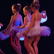 2015, Wellington Dance & Performing Arts Academy