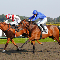Silvestre De Souza riding Forest Maiden winning The BetVictorir.com/British Stallion Studs EBF Maiden Stakes, at Kempton Park