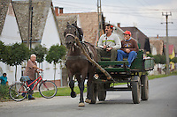 Horse carriage, Duna Drava National Park, Mohacs, Hungary