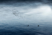 people on an imaginary plain<br /> composite image