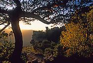 France, Languedoc Roussillon, Lozère, Cause Méjean, gorges de la Jonte, Corniche du Causse Méjean