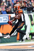 Cincinnati Bengals cornerback Josh Shaw (26) leaps while trying to down a punt near the goal line in the second quarter during the 2017 NFL week 8 regular season football game against the Indianapolis Colts, Sunday, Oct. 29, 2017 in Cincinnati. The Bengals won the game 24-23. (©Paul Anthony Spinelli)