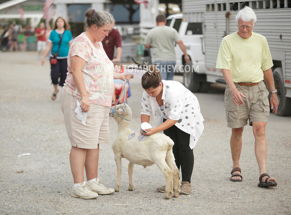Augusta, New Jersey - A girl puts paper spots on her goat before an animal costume contest at the New Jersey State Fair and Sussex County Farm and Horse Show on Aug. 11, 2010.