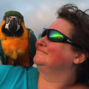 A woman's macaw sits on her shoulder as the sun sets on a beach at Pacific City, Oregon.