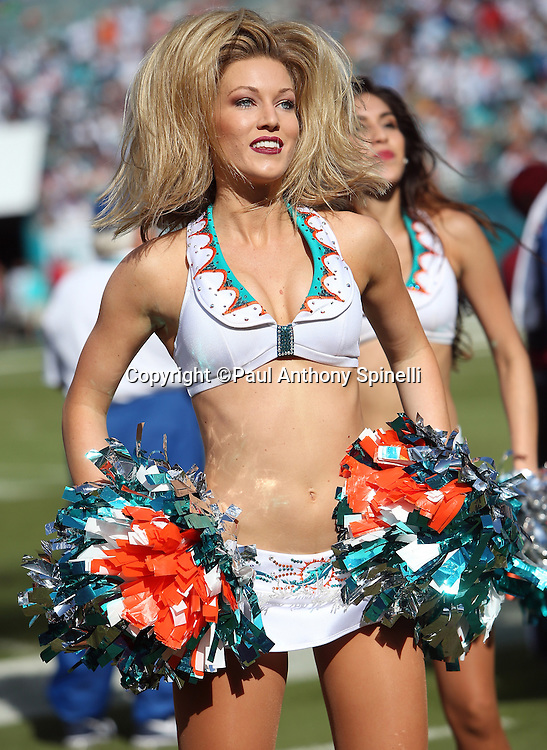 A Miami Dolphins cheerleader waves her pom poms and flips her hair during a dance routine during the 2015 week 11 regular season NFL football game against the Dallas Cowboys on Sunday, Nov. 22, 2015 in Miami Gardens, Fla. The Cowboys won the game 24-14. (©Paul Anthony Spinelli)