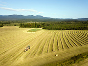 Haying at the Des Marias Farm in Brandon, Vermont.