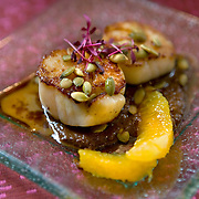 Cayo de hacha con pipián de chile pasilla, Seared scallops with a pasilla chile and pumpkin seed sauce, orange segments, pumpkin seed oil and toasted pumpkin seeds at Oyamel, a Mexican restaurant  in downtown Washington, DC.