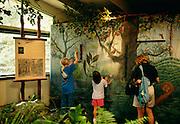 Hawaii Nature Center, Iao Valley, Maui, Hawaii