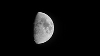 Moon with bird (?) flyby (10 of 25). Image extracted from a movie taken with a Nikon D4 camera and 600 mm f/4 lens.